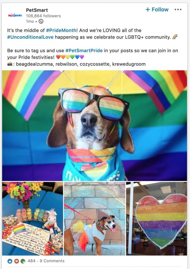 PetSmart LinkedIn Pride Post