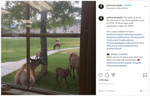 Yellowstone Instagram