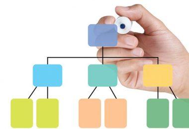 Expert Advice to Organize Your Recruitment Marketing Team